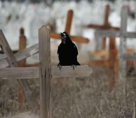 afacerea-locul-de-veci-biserica-ortodoxa-vrea-monopol-pe-cimitire