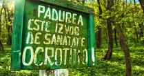 Pădurea Vorniceni sau turist la mine-n sat