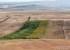Mai sunt 7 zile pentru înștiințarea primăriei privind culturile afectate de secetă