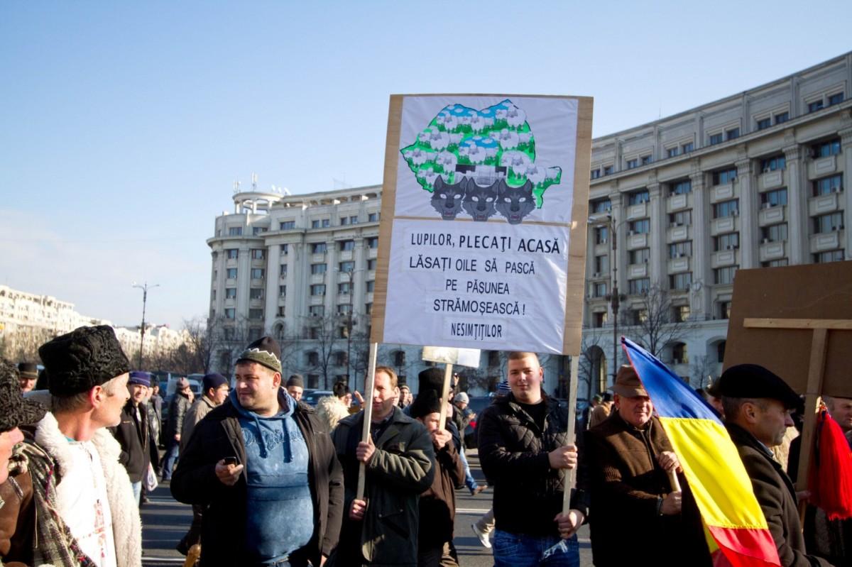 sursa foto: republica.ro