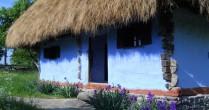 Casa mea…