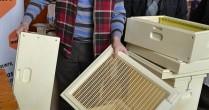 Stupul din poliuretan: Este inventat de un român și ajută apicultorii să facă o producție mai bună de miere